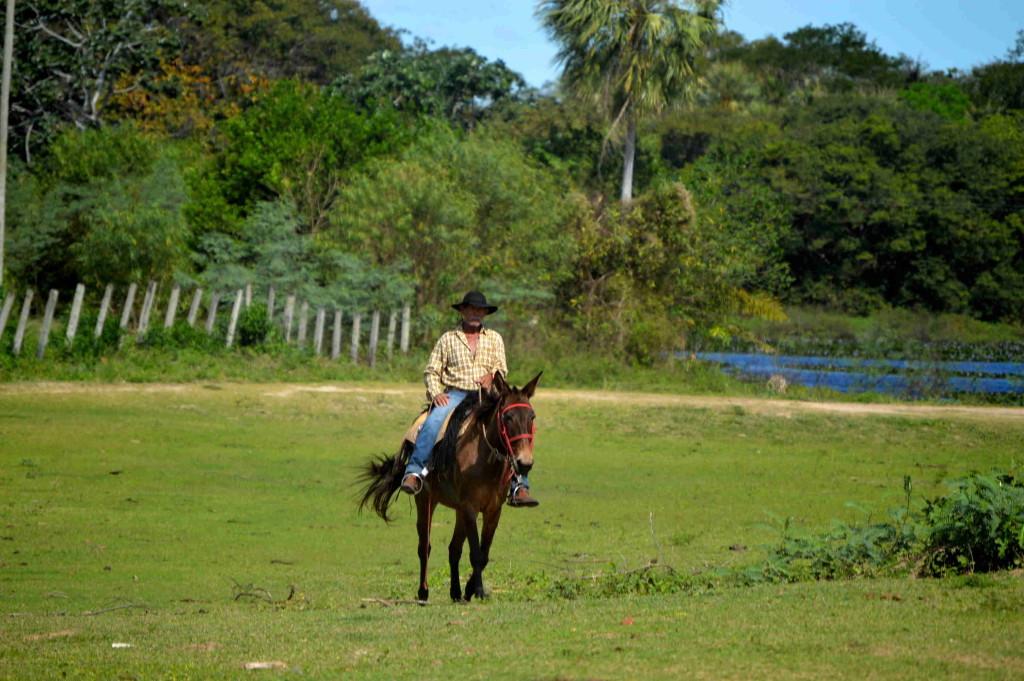 Opravdickej cowboy